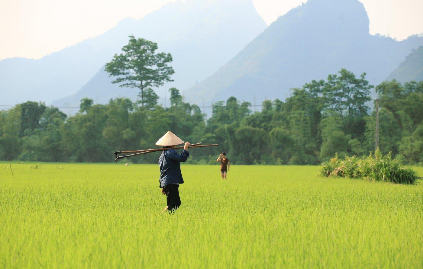 De magnifiques vacances au Vietnam